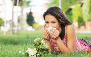 stop alergeni